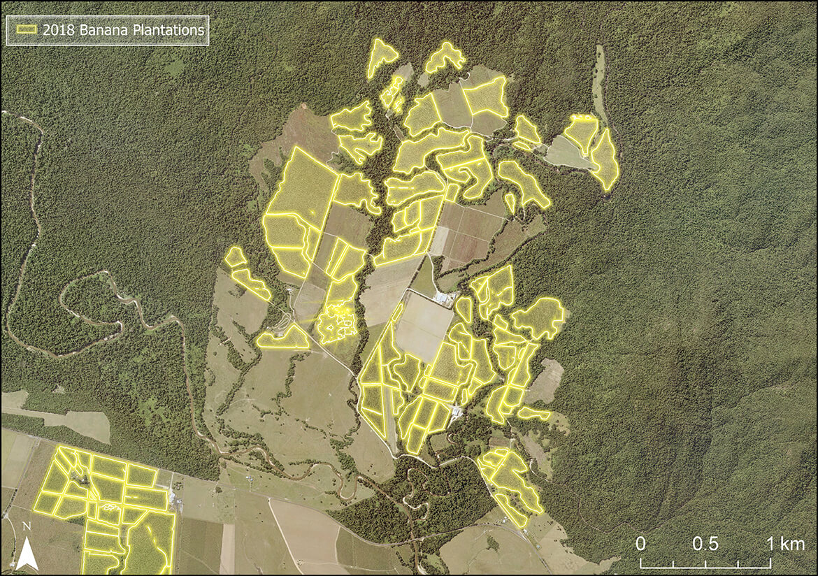 An example of how DES used ArcGIS Pro and Machine Learning in a computer vision model to map banana plantations in the Johnstone River catchment area.