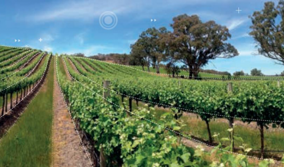 Leveraging GIS technology in viticulture