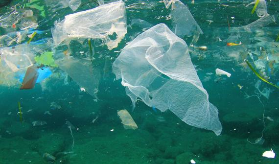 Banning single-use plastic bags in Australia card